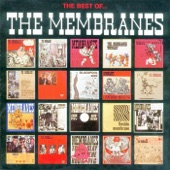 The Membrains - Ice Age