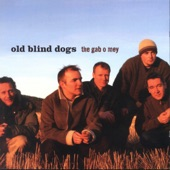 Old Blind Dogs - The Wisest Fool