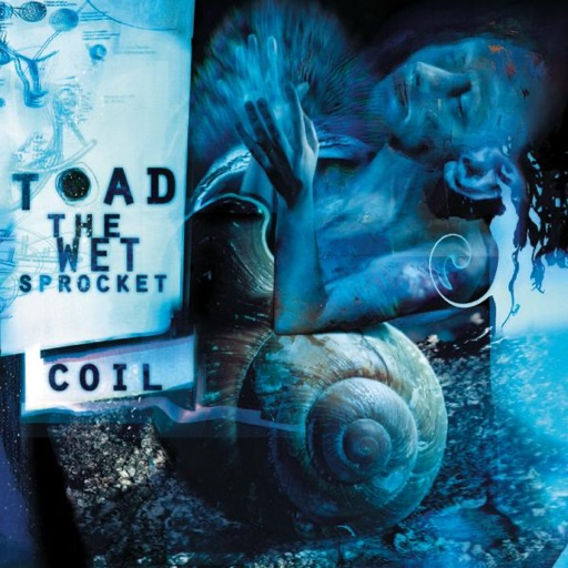 Art for Come Down by Toad The Wet Sprocket