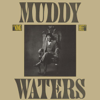 Champagne & Reefer - Muddy Waters