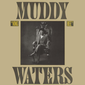 King Bee-Muddy Waters