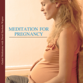 Meditation for Pregnancy - Guided Meditations With David Harshada Wagner