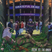 Grateful Dead - The Wheel (Live at Knickerbocker Arena, Albany, NY, March 1990)