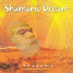Shamanic Dream