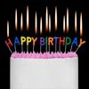 Leif Garrett - Happy Birthday  artwork