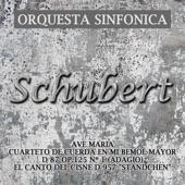 Orquesta Sinfonica - Sinfonía Nº 5 En Si Bemol Mayor D 485 (Andante Con Moto)