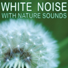 White Noise With Nature Sounds - White Noise