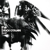 The Black Crowes - Girl From A Pawnshop