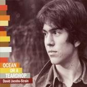 David Jacobs-Strain - Take My Chances