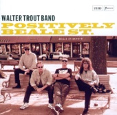 Walter Trout - Song For a Wanderer