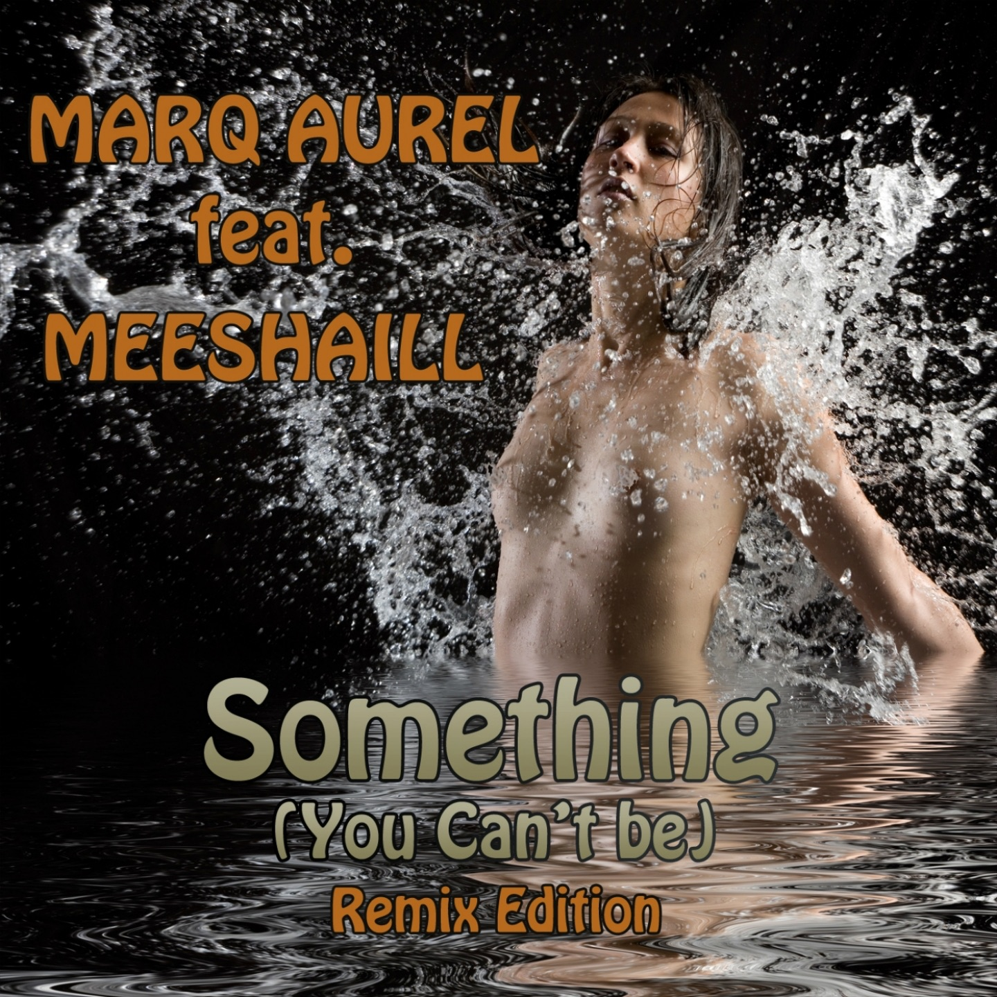 Something (You Can't Be) [feat. Meeshaill] [The International Buissnes Remix]
