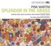 Pink Martini - Splendor In the Grass artwork