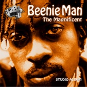 Beenie Man - The More I Love