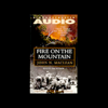 John N. MacLean - Fire on the Mountain: The True Story of the South Canyon Fire  artwork