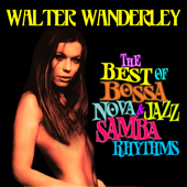 The Best of Bossa Nova & Jazz Samba Rhythms