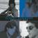Albert Hammond - Albert Hammond: Greatest Hits