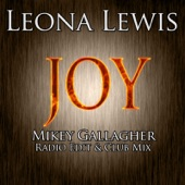 Joy (New Remixes) - Single