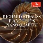 Mendelssohn Piano Trio - Piano Trio No. 2 in D Major, TrV 71: I. Allegro moderato