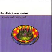 The Olivia Tremor Control - Fireplace