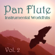 Pan Flute - Instrumental Worldhits - Volume 2