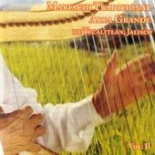Mariachi Arpa Grande De Tecalitlan Vol. 2 - Paloma Pico Plateado