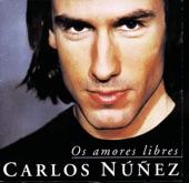 Carlos Núñez - Jigs & Bulls