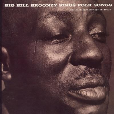Big Bill Broonzy Sings Folk Songs - Big Bill Broonzy