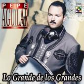 Pepe Aguilar - Amor Con Amor Se Paga
