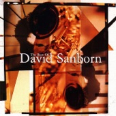 David Sanborn - A Tear for Crystal (Edit)