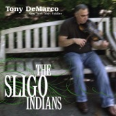 Tony DeMarco - Slow Air: The Sally Gardens
