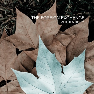Authenticity - The Foreign Exchange