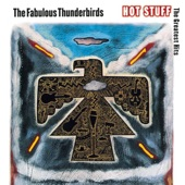 The Fabulous Thunderbirds - You Can't Judge a Book By Its Cover