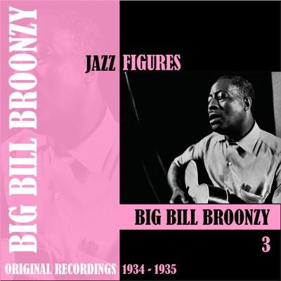 Jazz Figures: Big Bill Broonzy, Vol. 3 (1934-1935) - Big Bill Broonzy