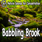 Nature Sounds for Concentration – Babbling Brook - Single