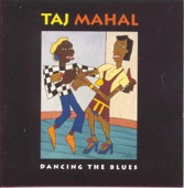 Taj Mahal - Blues Ain't Nothin'