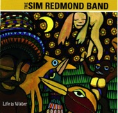 Sim Redmond Band - Good Dreams