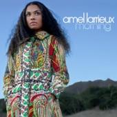 Amel Larrieux - Weary