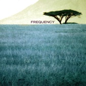 Frequency - Take Refuge