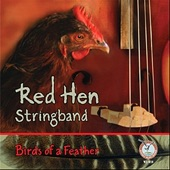 Red Hen Stringband - Colours