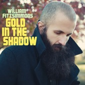 William Fitzsimmons - Beautiful Girl