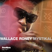 Wallace Roney - Just My Imagination