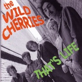 The Wild Cherries - Bye Bye Birdie