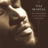 Taj Mahal - Early In The Morning