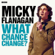 Micky Flanagan - Micky Flanagan: What Chance Change? (Complete Series)