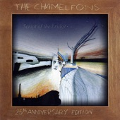 The Chameleons - Second Skin