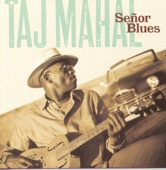 Taj Mahal - I Miss You Baby