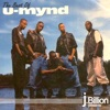 j.Billion Presents the Best of U-MYND