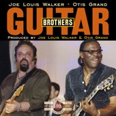 Joe Louis Walker - Imitation Ice Cream Blues