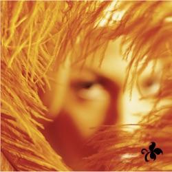 View album Stone Temple Pilots - Shangri-La Dee Da