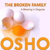 The Broken Family A Blessing in Disguise - EP